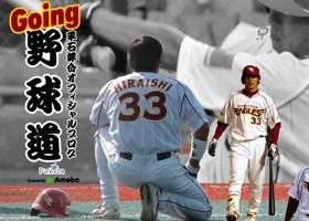 平石洋平オフィシャルブログ「Going 野球道」